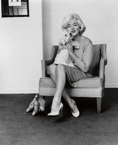 Marilyn Monroe with her Maltese, Maf, in 1961. Maf, short for 'Mafia', was Monroe's last dog, and was given to her by Frank Sinatra.