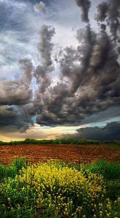 """Track 8""  Horizons by Phil Koch  Milwaukee, Wisconsin"