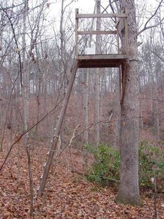 1000 images about a love for hunting blinds diy on for Diy hunting tree stand