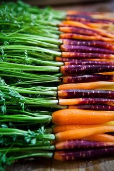 Purple Carrots have a slightly different texture than regular orange carrots - lighter, crispier, almost like a pear.  The color comes from beta carotene with some alpha carotene, a pigment the body converts to Vitamin A, which is essential for healthy skin and vision in dim light.  The purple pigments are called anthocyanins, and act as anti-oxidants. Kids love these. ~ Houston Foodlovers