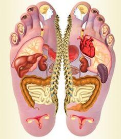 Refleksologia, aby pomóc w utrzymaniu równowag Wellness Fitness, Yoga Fitness, Health And Wellness, Health Tips, Health Fitness, Reflexology Massage, Massage Therapy, Alternative Medicine, Human Body