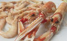Estas cigalas de la foto, que parece que están preparadas para hacerte un pelao con sus pinzas, son de La Marea de Marcos, un restaurante de Jerez que se está haciendo un hueco como sitio de referencia en la provincia en lo que son mariscos y pescados de roca. Reportaje de domingo en Cosasdecome. Al enlace. http://www.cosasdecome.es/sin-categora/mariscada-en-reino-de-rabo-de-toro/#.VccJivnoB-w