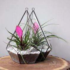 Géométrique fil métallique Air plantes pot de fleur suspendu rack Home Wedding Decor