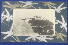 1900's Japanese Postcard : Art of Dragonfly & Photo of Cranes on Pine Tree ( crane & pine tree = good luck charms in Japan) / insect art / vintage antique old art card / Japanese history historic paper material Japan