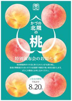 h& Fruit Cakes Packaging Design Food Web Design, Food Graphic Design, Food Poster Design, Creative Poster Design, Menu Design, Graphic Design Posters, Banner Design, Flyer Design, Japanese Poster Design