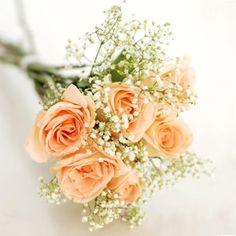Google-kuvahaun tulos kohteessa http://www.floweradvisor.com/img/florist/honey_dew_FA3420_300.jpg