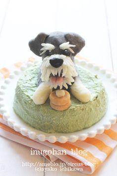 Decoration cake for dogs. *Miniature Schnauzer*