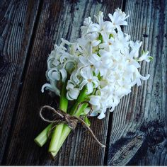 Dark Plum Flowers, Peach Flowers, All Flowers, Fresh Flowers, White Flowers, White Hyacinth, Hyacinth Flowers, Diy Wedding Flowers, Wedding Bouquets