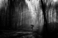 Waiting for the rain by Stephan  Scherze