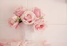 white roses background - Google Search
