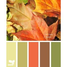 Blurb ebook: Design Seeds ❤ liked on Polyvore featuring design seeds, backgrounds, color palettes, colors y colours