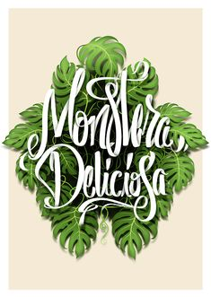 Monstera Deliciosa Typography by Johan Illustration