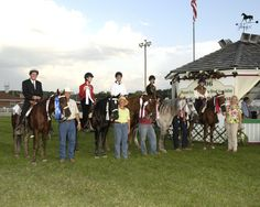 Hoofbeats To Healing - using Missouri Foxtrotter Horses for their therapeutic mounts.