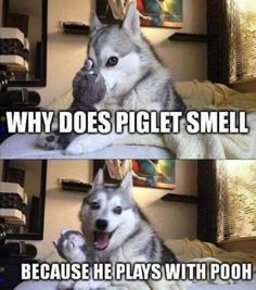 Find very good Jokes, Memes and Quotes on our site. Keep calm and have fun. Funny Pictures, Videos, Jokes & new flash games every day. Puns Jokes, Jokes And Riddles, Corny Jokes, Dog Quotes Funny, Funny Animal Jokes, Funny Puns, Dad Jokes, Really Funny Memes, Stupid Funny Memes