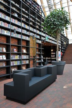 Very interesting...something other than just color behind the bookshelf. Book Mountain by MVRDV