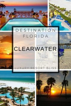 There are some really great Clearwater resorts. Find out which ones they are plus check out lots of pictures and video. Clearwater Resorts, Clearwater Beach Florida, Florida Beaches, Sarasota Florida, South Florida, Best Resorts, All Inclusive Resorts, Best Hotels, Amazing Hotels