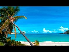 Island Ambience gives you a dose of Vitamin Sea. Relax with the sound of Ocean waves, Nature`s ASMR. A calming accompaniment to your meditation, sleep, study or work. Ocean Wave Sounds, Ocean Waves, Beach Waves, Relaxing Gif, Relaxing Music, Relaxing Pictures, Relaxation Meditation, Meditation Music, Mind Relaxation