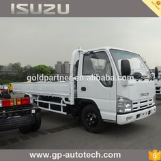 ISUZU 3T Light Cargo Truck for Sale