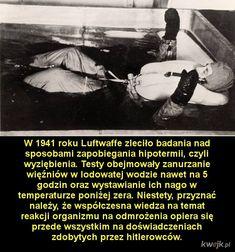 Luftwaffe, Best Memes, Wwii, Sad, Science, Education, Retro, Life, Inspiration