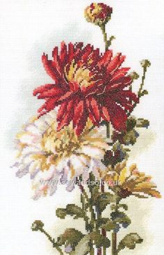 Shop online for Chrysanthemum Cross Stitch Kit at sewandso.co.uk. Browse our great range of cross stitch and needlecraft products, in stock, with great prices and fast delivery.