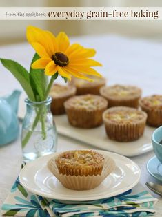 These Morning Glory Muffins are paleo, primal, and SCD! When I saw how many of the recipes were compliant with the Specific Carbohydrate Diet (SCD) I knew that I definitely wanted to get my hands on the Everyday Grain Free Baking when it was released. SCD is the diet that brought me to a whole foods and gluten-free way of eating to get my Chrone's under control.