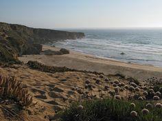 Praia do Malhão, Alentejo, Portugal. (Photo: AFloresm) #alentejo #visitalentejo #portugal #visitportugal #travel #visit #beach #malhao