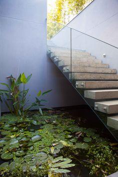 Highfield St - Ben Scott Garden Design