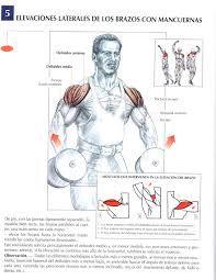 Resultado de imagen para ejercicios para definir espalda hombre