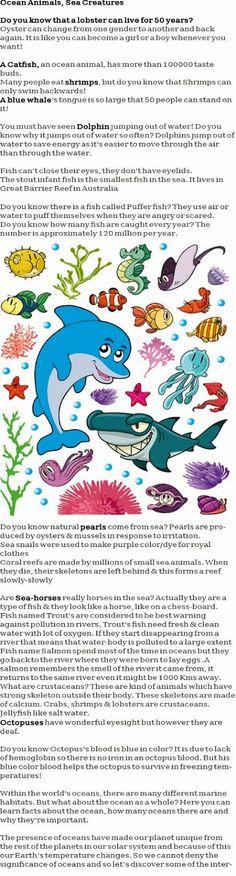 Ocean animals for kids http://firstchildhoodeducation.blogspot.com/2013/11/ocean-animals-for-kids.html