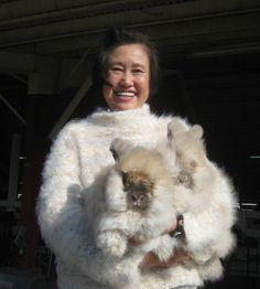 angora rabbit sweaters -
