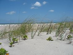 Cocoa Beach, Florida--  Time for a beach trip! www.floridabeachbums.com