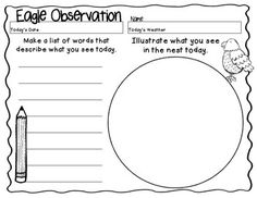 EAGLE OBSERVATION WRITING ACTIVITY - You will get 4 writing/observation sheets to use as a response activity when watching the Decorah Eagles.  This is a great way to engage your reluctant writers to practice some descriptive writing! $