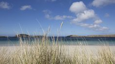 Marram grass in front of an Atlantic beach Atlantic Beach, Grass, Scotland, Coastal, Beautiful Places, Island, Mountains, World, Range