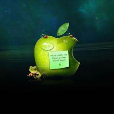 Interesting Apple iPad Wallpaper Download | iPhone Wallpapers