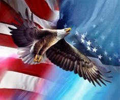 I'm a patriotic american girl :)