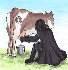 Darth Vader at the Farm by prokaryont