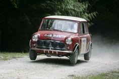 Mini in rally