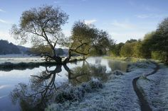 Whether you're looking to burn off too many mince pies or make the most of the fresh air, here are some great winter walks to enjoy over the festive season Stuff To Do, Things To Do, Random Stuff, Winter Walk, Boxing Day, Days Out, Surrey, The Fresh, The Great Outdoors