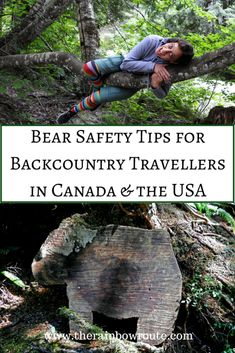 Learn how to prevent and handle a bear encounter if you are planning on doing backcountry travelling in Canada and the USA.