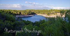 Der Naturpark Mondrago hat für die gesamte Familie etwas zu bieten: Strand, Felsen, Tiere und ein traumhafte, geschützte Landschaft.