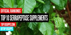 We ranked the best serrapeptase supplements you can buy now. These top 10 serrapeptase products are the highest rated and best reviewed online.