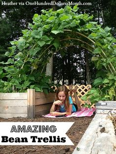 Wow! Yesterday my buddy Heather from Massachusetts sent me a couple of pictures of her backyard garden, including this one of her daughter reading a book under their bean trellis. Her daughter was suppose to be picking weeds but was caught munching on...