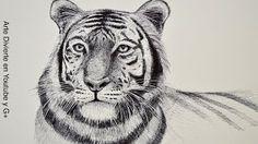 curso gratis dibujante - YouTube