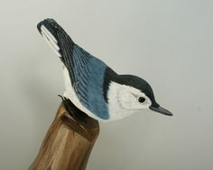 Nuthatch Bird Carving Hand Carved Bird Figurine of a White Breasted Nuthatch Wildlife Art Wood Sculpture Collectible Wildlife Art by TurtleMtnArtistry on Etsy