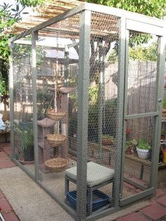Cats Toys Ideas - Play area for indoor cats. More - Ideal toys for small cats Animal Room, Outdoor Cat Enclosure, Reptile Enclosure, Fancy Cats, Cat Playground, Dog Rooms, Cat Condo, Outdoor Cats, Outdoor Ideas