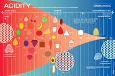 "LARGE Acidity (Food Science) Print featured in Top Chef Masters - 20""x30"""