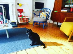 Living room. Sweet Home, Kids Rugs, Living Room, Home Decor, Decoration Home, House Beautiful, Kid Friendly Rugs, Room Decor, Home Living Room