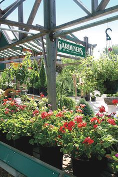 Garden Club, Garden Shop, Garden Center Displays, Flower Nursery, Garden  Supplies, Burlington Vermont, Flower Shops, Zen Gardens, April 13