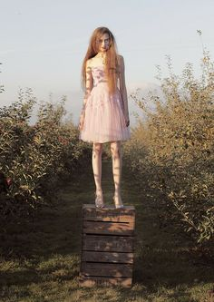 Find images and videos about fashion, photography and pink on We Heart It - the app to get lost in what you love. Apple Garden, Jasmine Sanders, Photoshoot Inspiration, Fashion Shoot, High Fashion, Tulle, Photography, Beauty, Beautiful