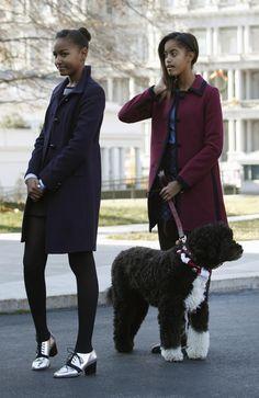 Bo taking the girls on a walk.